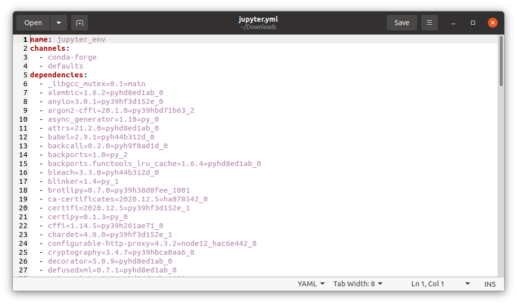 conda environment YAML file